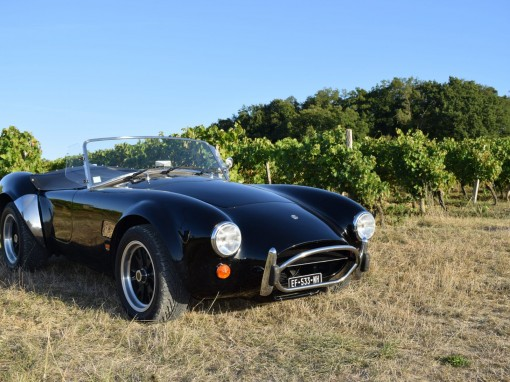 NOW SOLD!  MK IV AutoKraft AC Cobra